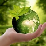 Zero Waste Home Ideas: Tips to Make It Happen